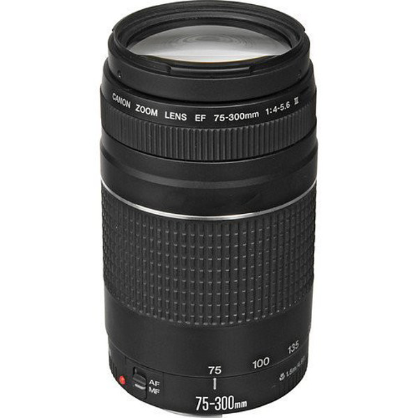 Picture of Canon EF 75-300mm f/4-5.6 III Lens
